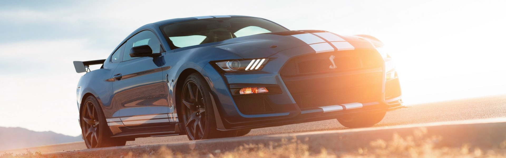 2020-ford-mustang-shelby-gt500-64.jpg
